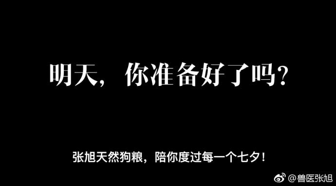"""兽医张旭请你吃""""狗粮"""""""